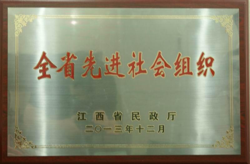 2013年度全省先进社会组织